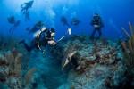 Kurz potápění - Junior Open Water Diver